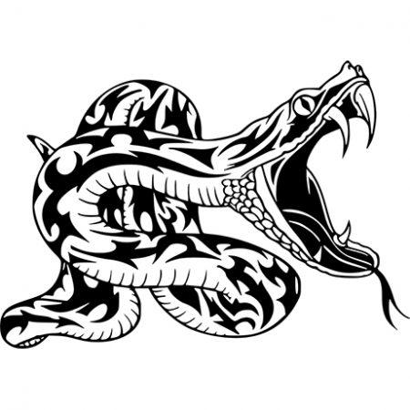 Kígyó falmatrica