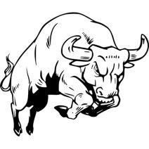 bika falmatrica