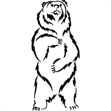 medve falmatrica