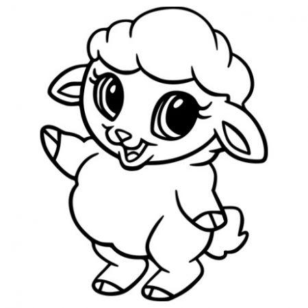 Kis bárány autó matrica