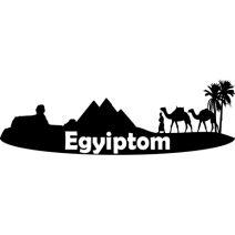 Egyiptom falmatrica