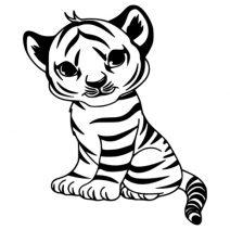 Kis tigris 1 falmatrica