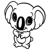 Koala falmatrica