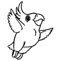 Kis madár falmatrica